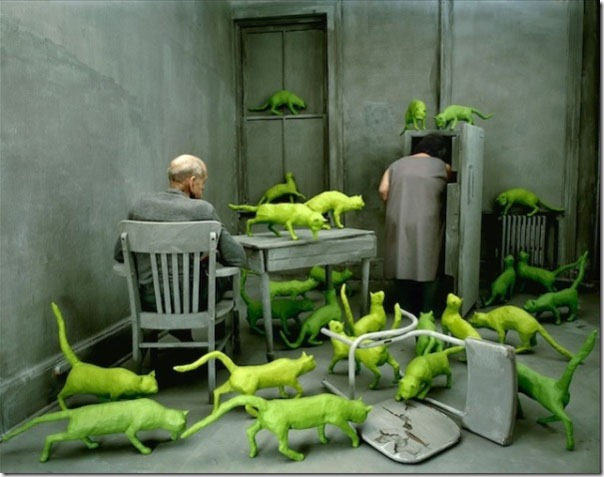 Radioactive cats