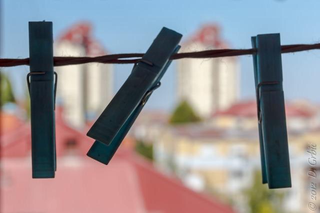 Jedna na dan, 31. avgust 2012: Štipaljke a la Liman 4
