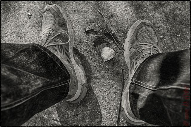 Jedna na dan, 5. oktobar 2012: žuti list na betonu, uokviren patikama