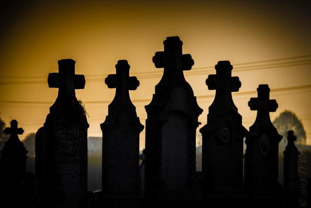Jedna na dan, 21. novembar 2012: Groblje