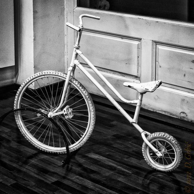 Jedna na dan, 1.decembar 2012: Bicikl