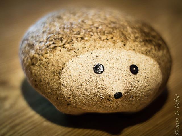 Jedna na dan, 22. decembar 2012: Ćelavi jež