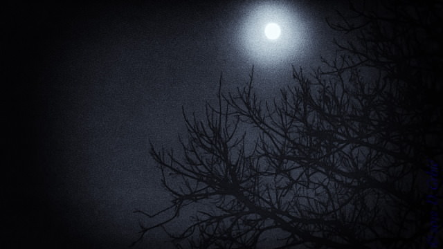 Jedna na dan, 27. decembar 2012: Mesec je bleda fleka boje olova