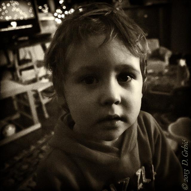 Jedna na dan, 12. januar 2013: Mali Robert