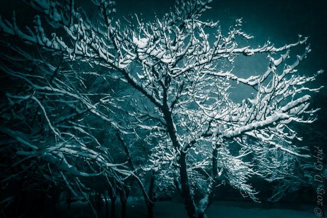 Jedna na dan, 18. januar 2013: Pet centimetara snega za tri sata padanja