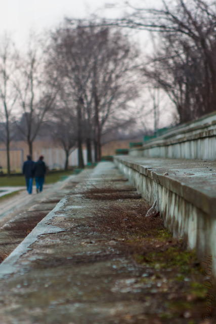 Jedna na dan, 6. mart 2013: Šetači na starom jezeru