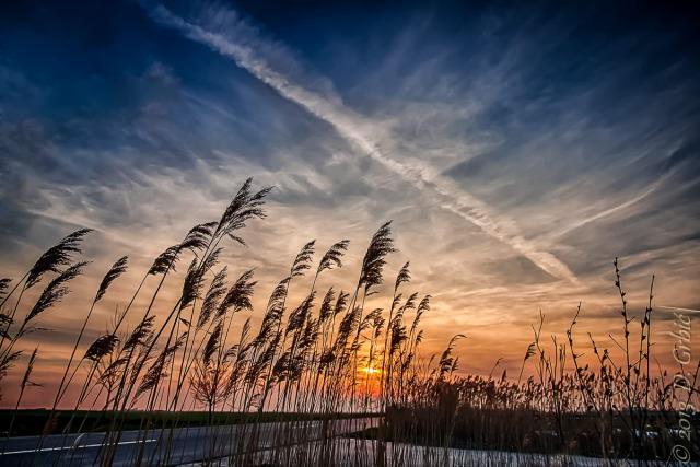 Jedna na dan, 17. mart 2013: Zalazak Sunca u šaši pokraj druma