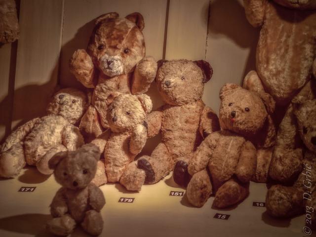 Jedna na dan (3-92), 30. septembar 2013: Plišani medvedi