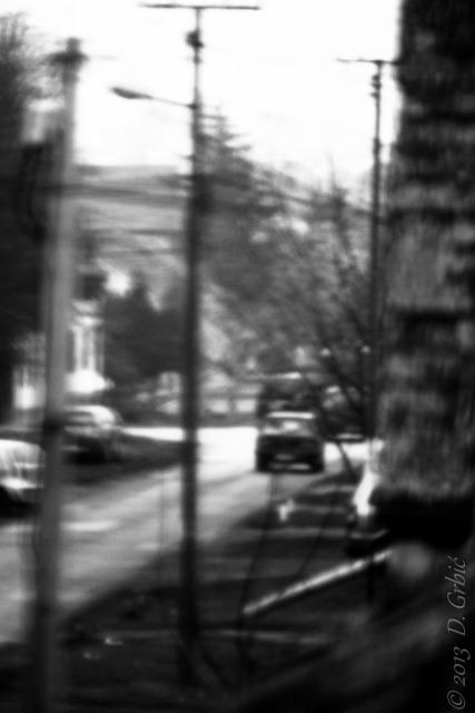 Jedna na dan (3-169), 16. decembar 2013: Umetnost ne zna za granice. Ni za skrupule.