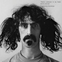 Kad administrator zadrema, onda mu Zappa celu noć svira na uvce...