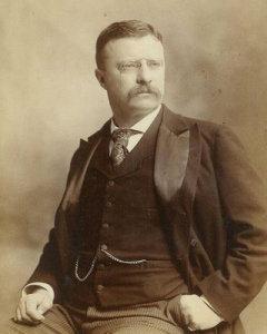 Teddy, veliki baja, plišani meda, američki predsednik i vizionar