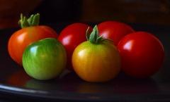 Rajsko voće, a nije jabuka (8 slova): PARADAJZ
