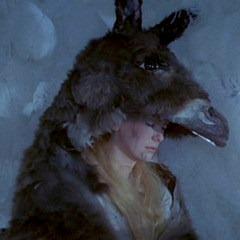 I sad, kad bismo tamo našli o drvo obešenu kožu divljeg magarca, naš bi se svet srušio.