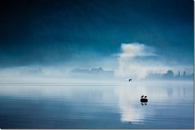Plavo jutro