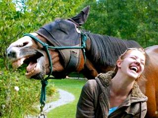 Da pukneš od smeha