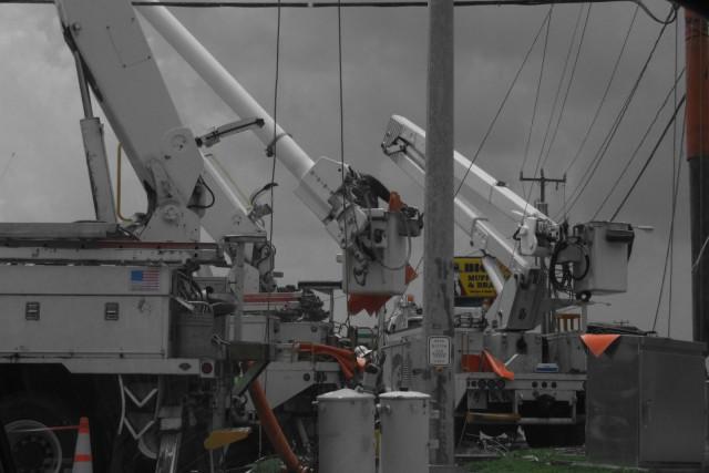 cranes_dscf4130