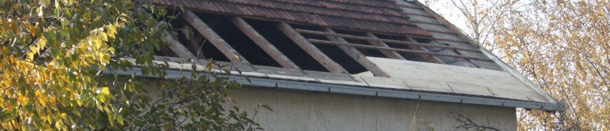 Једна од пре: под кровом